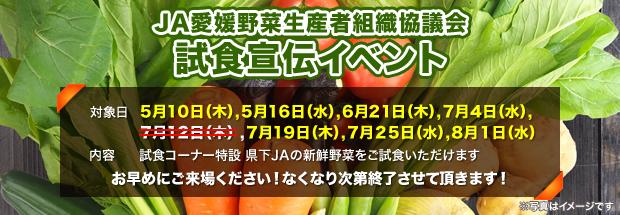 JA愛媛野菜生産者組織協議会 試食宣伝イベント