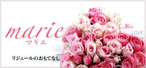 Marie(まりえ)プラン